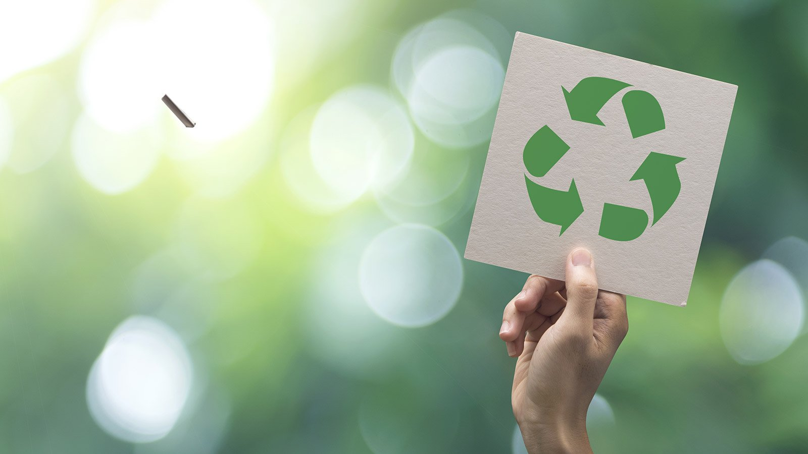 How Sustainable Is Paperboard? What You Need to Know
